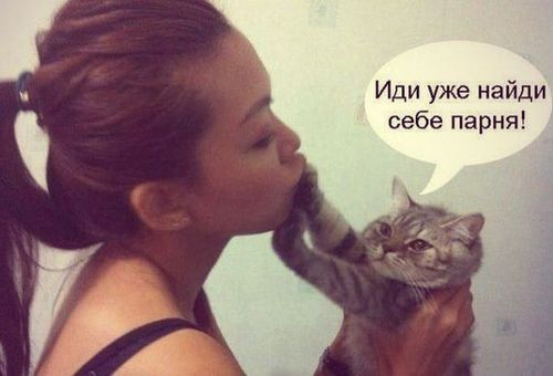 девушка и кот найди уже себе парня