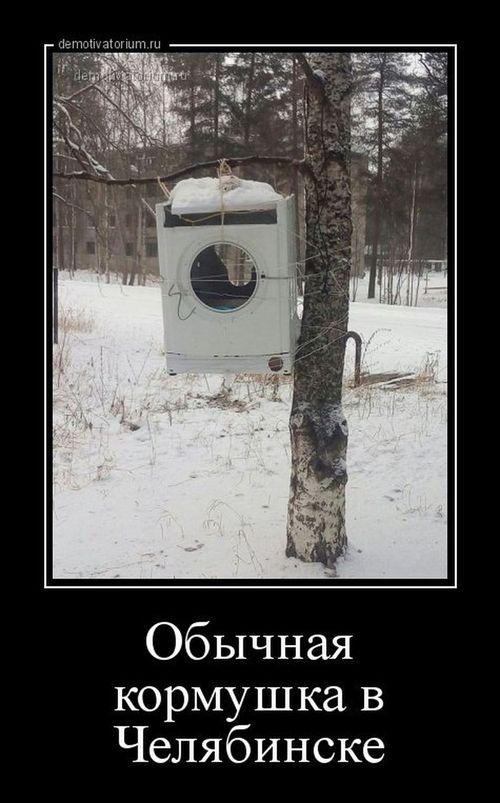 кормушка из стиральной машины