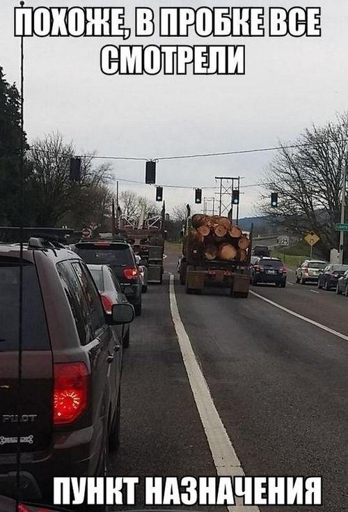 грузовик с бревнами пункт назначения